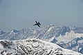 F A-18 Hornet (6240585084).jpg