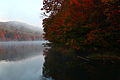 Fall-foliage-mountain-lake-early-morning-fog - West Virginia - ForestWander.jpg
