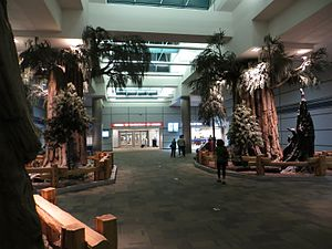 Fresno Yosemite International Airport - False sequoia trees inside the terminal