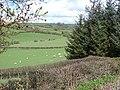 Farmland near Hiriaeth - geograph.org.uk - 790259.jpg