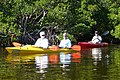 Feb. Kayak Paddle (19) (16397788239).jpg