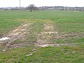 Field near Ogle - geograph.org.uk - 1801743.jpg