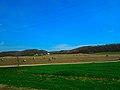 Field of Round Bales - panoramio (4).jpg