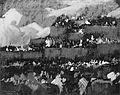 Fiesta in Taos MET ap54.99.jpg