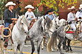 Fiestas Patrias Parade, South Park, Seattle, 2015 - 288 - the horses (21406535280).jpg