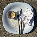 Finished meal empty plate at Highgate Cricket Club, Crouch End, plan view.jpg