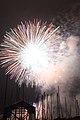 Fireworks - July 4, 2010 (4773756006).jpg