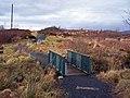 Footbridge in Sluggans Woodland Park - geograph.org.uk - 1136916.jpg