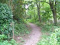 Footpath, Pilton - geograph.org.uk - 1500437.jpg