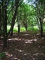 Footpath Junction, Stedham Marsh - geograph.org.uk - 864890.jpg