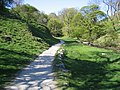 Footpath by Gordale Beck - geograph.org.uk - 502644.jpg
