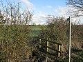 Footpath to Brinkley - geograph.org.uk - 1637242.jpg