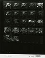 Ford A3695 NLGRF photo contact sheet (1975-03-17)(Gerald Ford Library).jpg