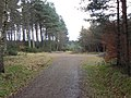 Forest cross-roads - geograph.org.uk - 1767680.jpg