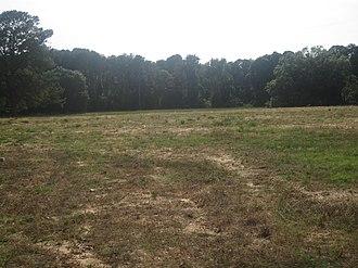 William G. Stewart Elementary School - Only the razed lot remains of Stewart Elementary School.
