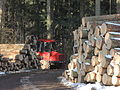 Forstwirtschaft Stift Schlägl 1.JPG