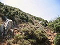 From Anemospilia to the top of Mount Giouchtas, 051312.jpg