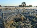 Frosty fields, Mays Green - geograph.org.uk - 616847.jpg