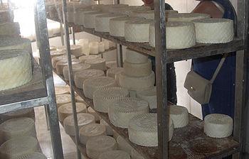 Evde peynir nasıl yapılır Peynir