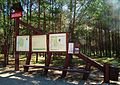 Funka, National Park Bory Tucholskie (2).jpg