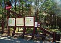 Funka, National Park Bory Tucholskie (2).jpg