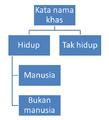 Gambar rajah kata nama khas.png