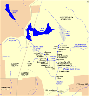 Map shows Kitchen Creek flows southeast from Ganoga Lake, through Lake Jean, dry Lake Rose, and ten waterfalls in Ganoga Glen. A second branch flows south through dry Lake Leigh, then eight waterfalls in Glen Leigh. The branches meet at Waters Meet then flow south through six waterfalls in Ricketts Glen. South Branch Bowman Creek is east of Lake Leigh and Big Run is west of Lake Rose. Pennsylvania Route 487 runs north-south at left, and Pennsylvania Route 118 runs east-west at the bottom of the map.