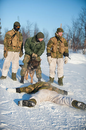 Garrison of Sør-Varanger - Personnel simulating an arrest