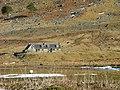 Garvabeg - geograph.org.uk - 1754070.jpg
