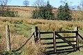 Gate, Hamer Beck - geograph.org.uk - 685361.jpg