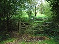 Gate - geograph.org.uk - 250161.jpg