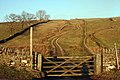 Gate onto footpath - geograph.org.uk - 695260.jpg