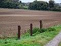 Gate posts, Tarrant Hinton Down - geograph.org.uk - 1028846.jpg