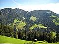 Gemeinde Wildschönau, Austria - panoramio.jpg