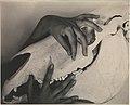 Georgia O'Keeffe—Hands and Horse Skull MET DP232998.jpg
