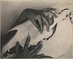 Georgia O'Keeffe—Hands and Horse Skull MET DP232998.jpg