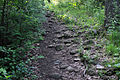 Gfp-wisconsin-lapham-peak-state-park-rocky-path.jpg