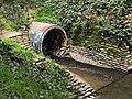 Glen Echo Creek culvert Oakland.jpg