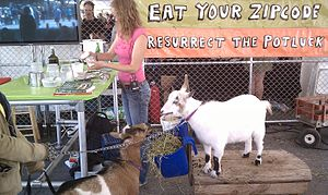 "Cheesemaking - A cheesemaking workshop with goats at Maker Faire 2011. The sign declares, ""Eat your Zipcode"", in reference to the locavore movement"
