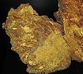 Gold vein stockwork in limonite (Gold Flake Vein, Farncomb Hill, near Breckenridge, Colorado, USA) 12 (16891788938).jpg