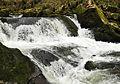 Golitha Falls 4.jpg