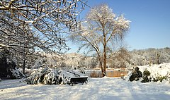 Grüttpark - Winter3.jpg