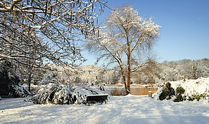 Grüttpark - Winter3.jpg