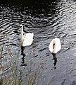 Grand Union Canal - 1973 (13251394363).jpg