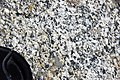 Granodiorite (Giant Forest Granodiorite, mid-Cretaceous, 97-102 Ma; Moro Rock, Sequoia National Park, California, USA) 5 (16592282717).jpg