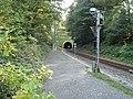 Grauer Stein-Tunnel - panoramio.jpg