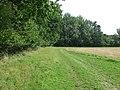 Green field boundary - geograph.org.uk - 964466.jpg