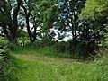 Green lane junction near Fell of Barhullion - geograph.org.uk - 497901.jpg