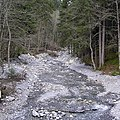 Grindelwald - panoramio (20).jpg
