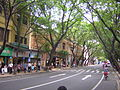 Guangzhou Street Scene 4.JPG